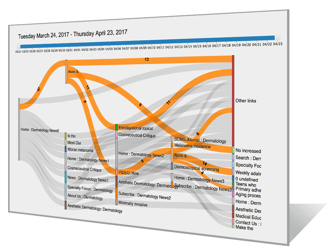 Customer Journey Visualization Sankey